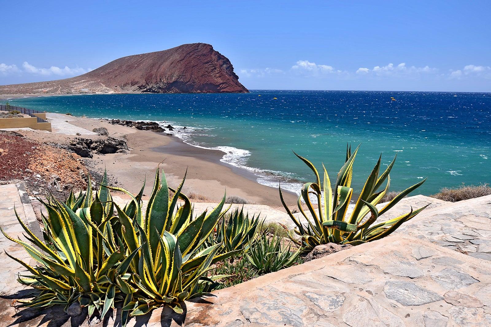 TENERIFE: l'isola dell'eterna Primavera